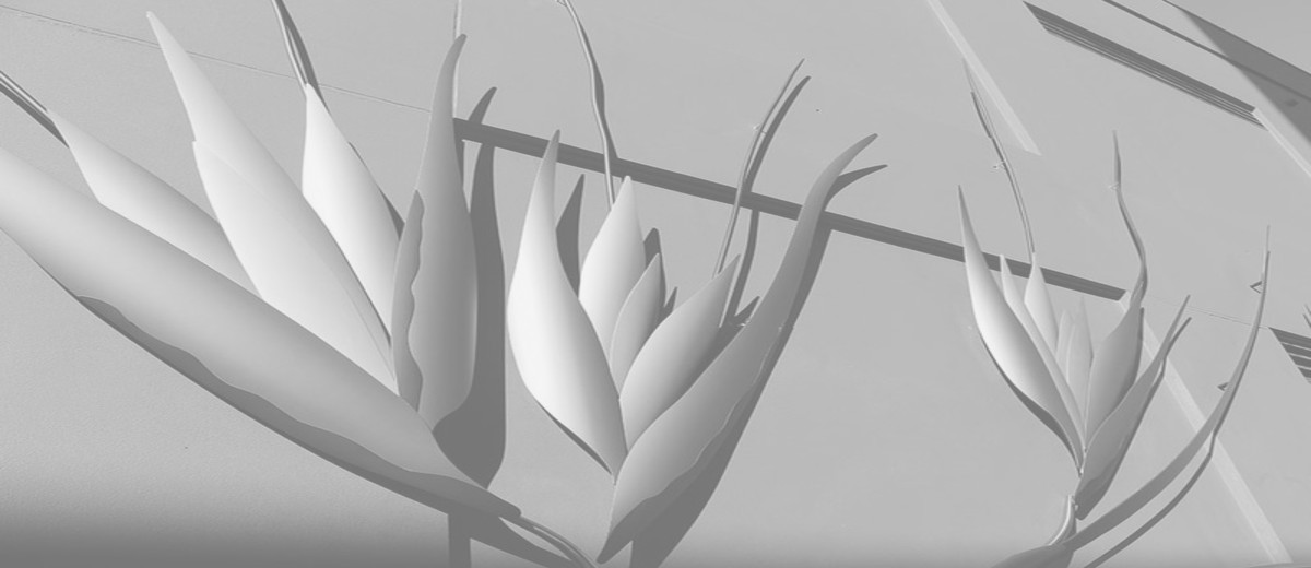 Image: 3D sculpture of Kangaroo grass against black gridded wall