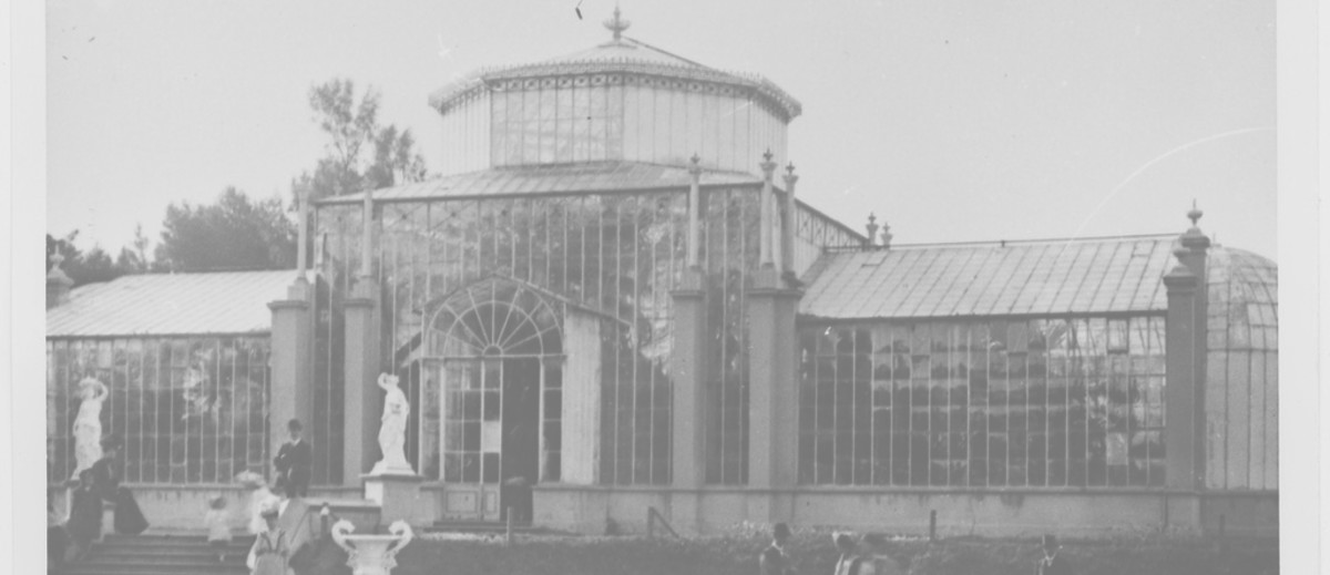 Image: Fancy-dressed public visit glasshouse
