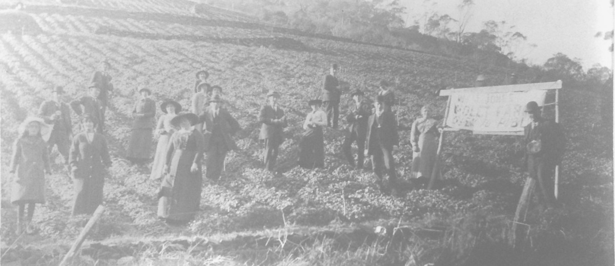 Image: group of people on a hillside