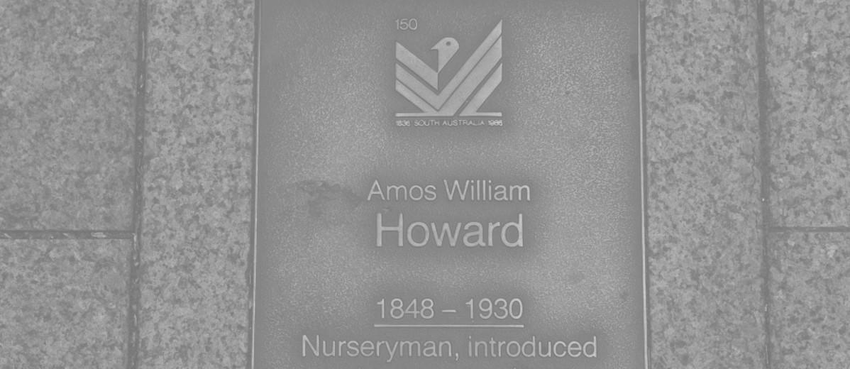 Image: Amos William Howard Plaque