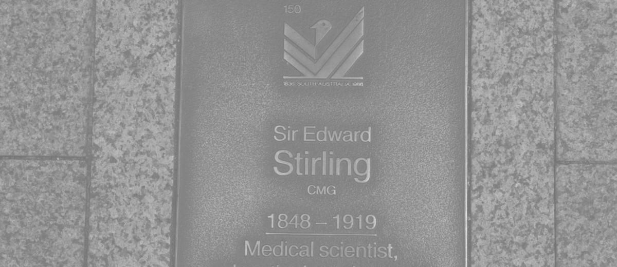 Image: Sir Edward Stirling Plaque