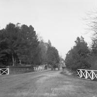 Image: People walking across a bridge on Victoria Drive