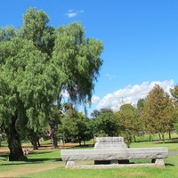 Image: a stone pillar and trough commemorating the Australian Light Horse and warhorses (1914-1918) are situated in a public park with a variety of trees and expanses of grass