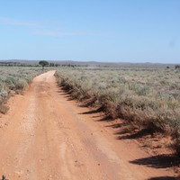 Image: red dirt road in outback South Australia