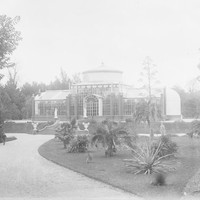 Image: Glasshouse in botanic garden