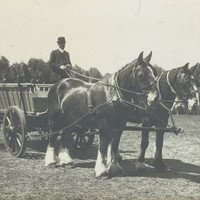 Image: Man sitting in a wagon drawn my two horses