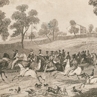Image: This sketch depicts a rushed departure from Adelaide by expedition members. Top hatted gentlemen and soldiers on horseback can be seen galloping down a hill and round a corner. In the foreground chickens, geese, goats and dogs are running.