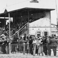 Image: Grandstand and crowds watching a horserace. The twin grandstands are full and race callers and reporters fill up the third stand