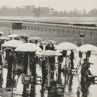 Image: crowd under umbrellas at race track