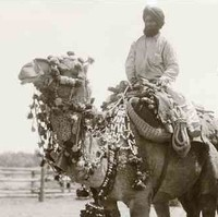 Image: One Afghan man rides his camel, while another Afghan stands next to his. The camel with rider is wearing a decorative harness