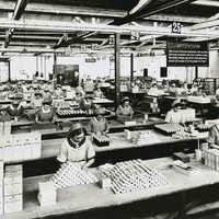 Image: Faulding Laboratories workers