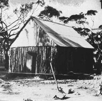 Image: A simple, single-storey timber hut with a corrugated metal roof is nestled amongst a small cluster of gum trees