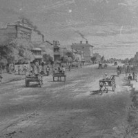 Image: Two and three storey residences and commercial buildings are set back from a wide tree lined dirt street upon which pedestrians and horse-drawn vehicles travel.