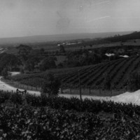 Penfolds winery, Stonyfell, 1920s