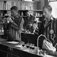 Wine tasting, Roseworthy College, 1937