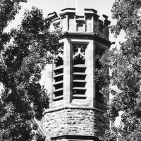 Image: A stone tower with a crenellated top can be seen between the branches of two trees. The tower is hexagonal in shape and features the Adelaide University coat of arms of the southern cross over an open book.