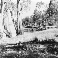 Image: the remains of a campsite surrounded by trees, with a river in the background
