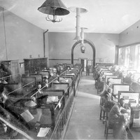 Image: Inside an office. Benches are partitioned into desks and occupied by a number of men.