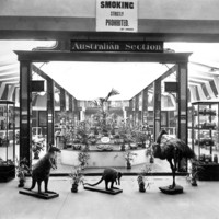 Image: Interior view of an exhibition hall in the South Australian Museum containing the Australian section showing glass cases and open displays of flora and fauna