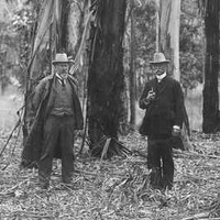 Image: Walter Gill in a forest