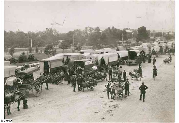 Image: A large number of horse-drawn carts as well as some men with hand-carts loaded with fruit and vegetables crowd a dirt road lined by parklands.
