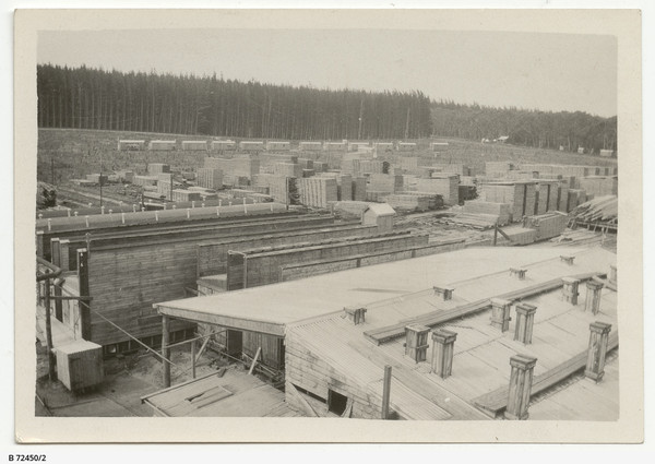 Image: overheard view of buildings and saw mill with pine forest in background