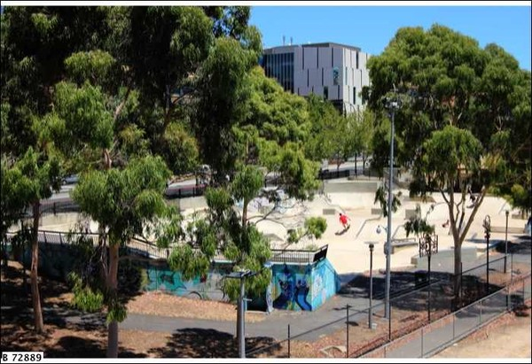 Image: a skateboarder makes use of a specialist skate park, set amongst trees. The backs of the ramps are covered in graffiti.