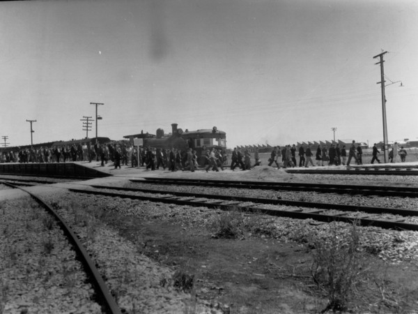 Image: A line of men and women walk away from a train towards a group of buildings in the background