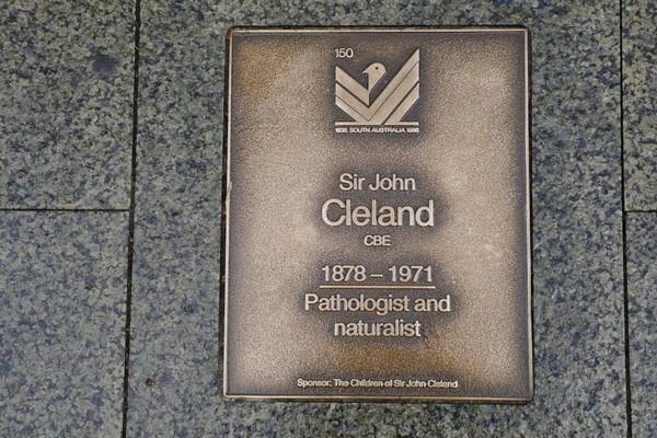 Image: Sir John Cleland Plaque
