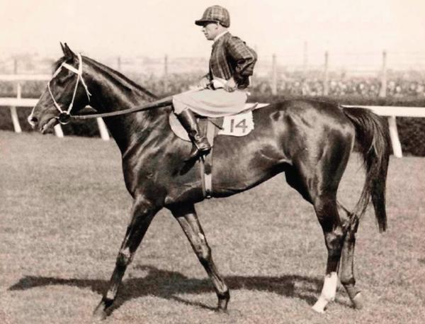Image: Jockey and his horse at a race track