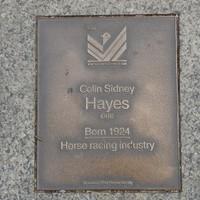 Image: Colin Sidney Hayes Plaque